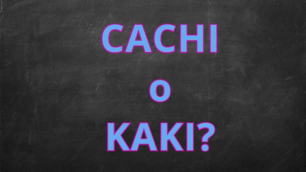 """Si scrive """"cachi"""" o """"kaki""""?"""